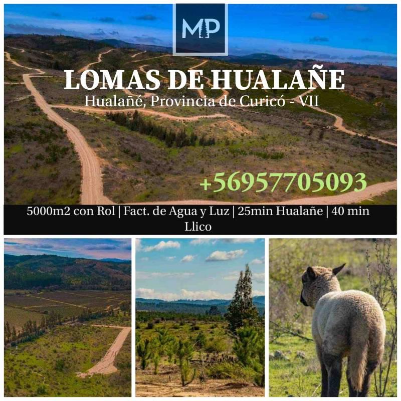 Hualañé | Venta de Parcelas en Hualañe en Séptima Región