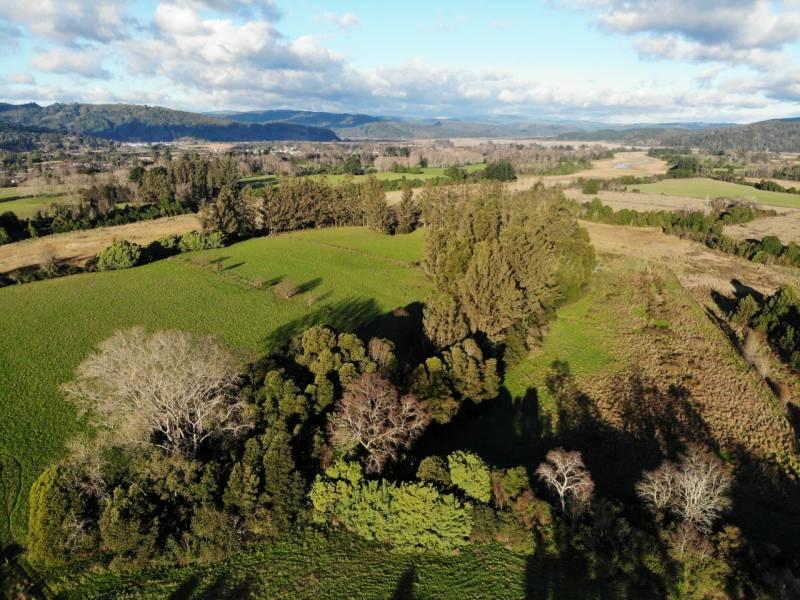 29 hectáreas en mejor ubicación PAILLAO