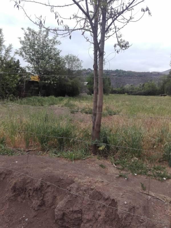 ( 88 )  Sitio Habitacional en Callejón los Lobos. Putaendo