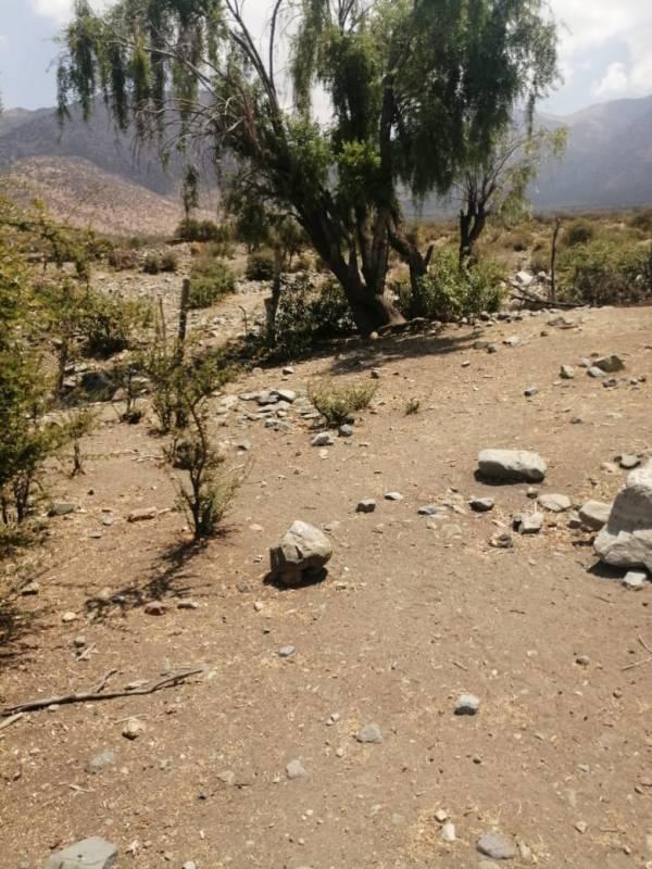 PARCELA DE 10.000 MTS EN SECTOR DE  CASA BLANCA, PUTAENDO