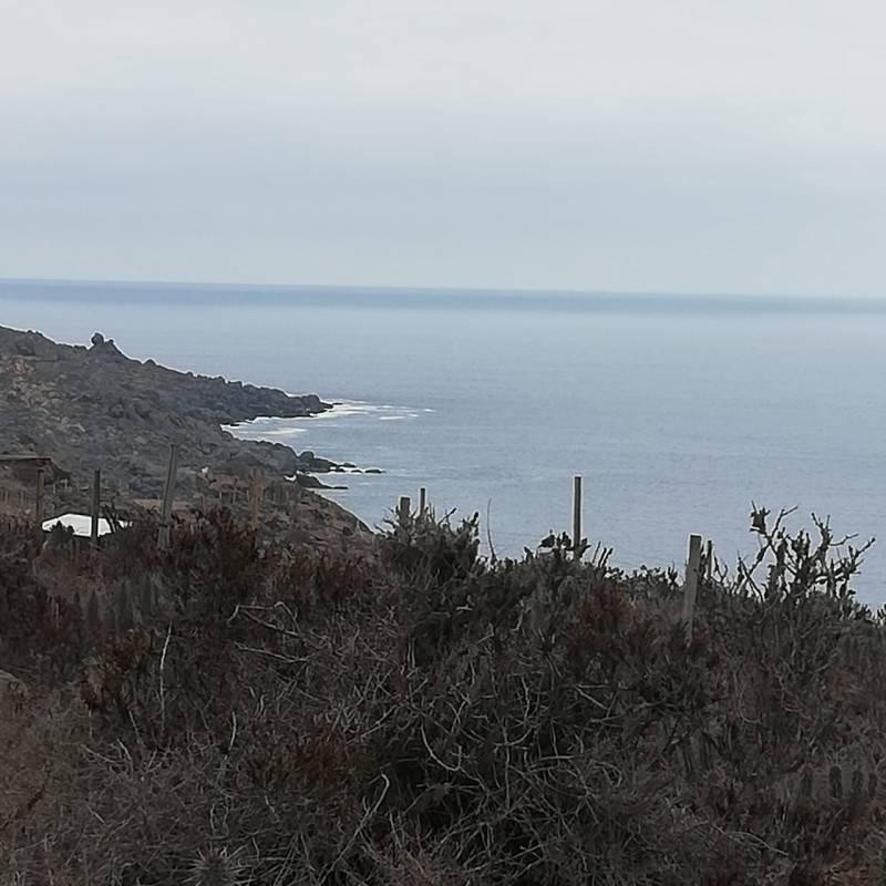 TERRENO FRENTE AL MAR DE 5000 MT2 CON HERMOSA VISTA