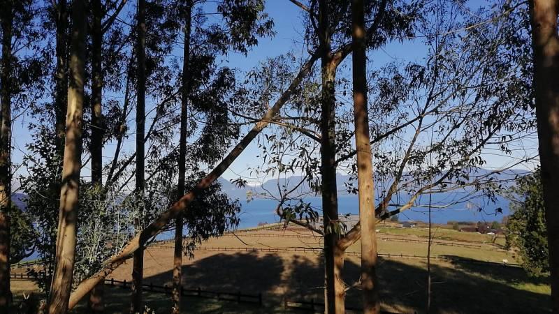 Lago Ranco, Condominio Puerto Guarda. Sitio 62. 5.000 m