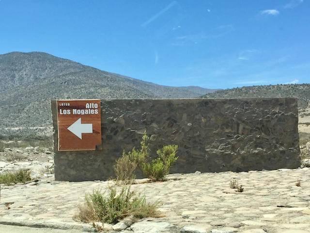 PARCELA 5.000 M2 CON ROL, 0,1 ACC. DE AGUA, LOS ALGODONES