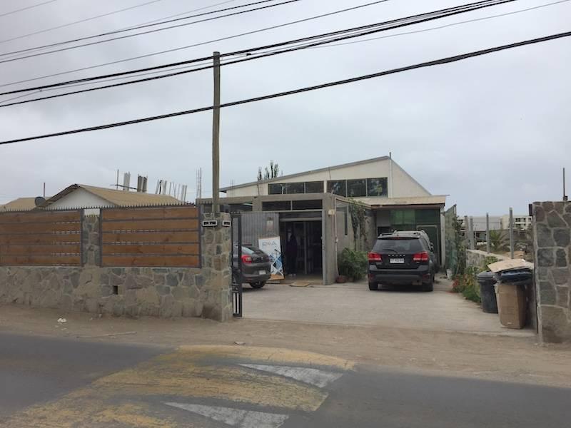 LOCAL COMERCIAL, 901 M2, 4 BAÑOS/3 OFICINAS, CALLE EL SAUCE