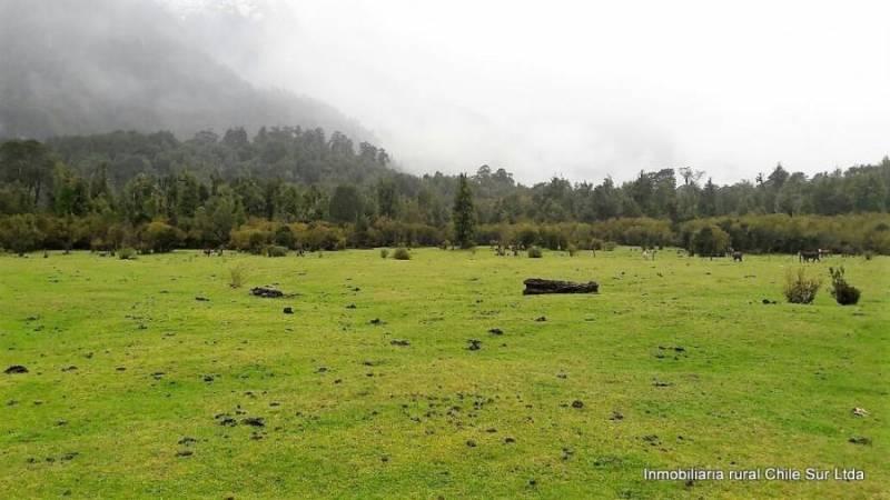 Se vende campo Ganadero de 774 hectáreas Rio Palena