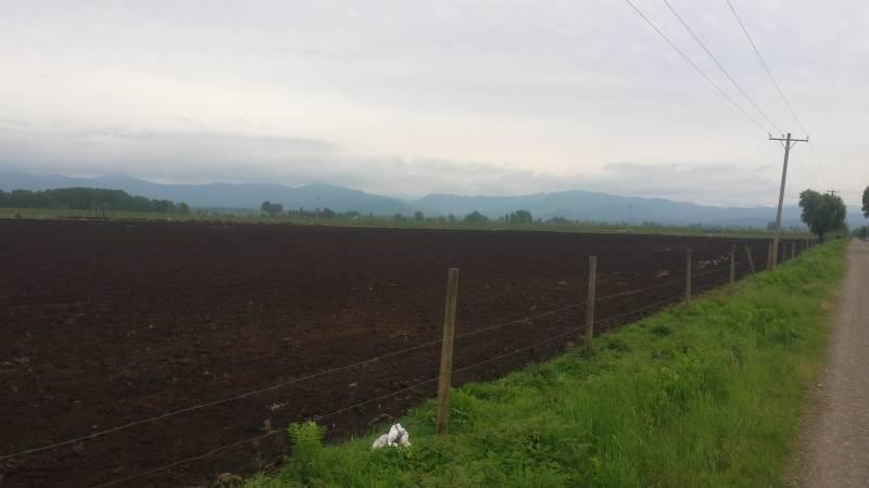 PARCELA DE 3 HECTAREAS; LONGAVI.