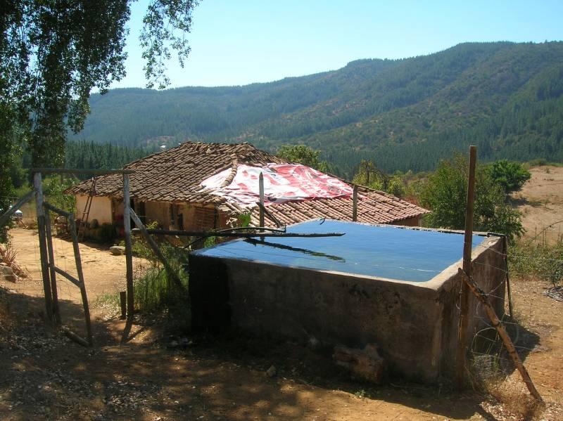 PARCELA 60 HÁ (300M DE FRENTE, 2.000 M DE FONDO).FORESTAL.