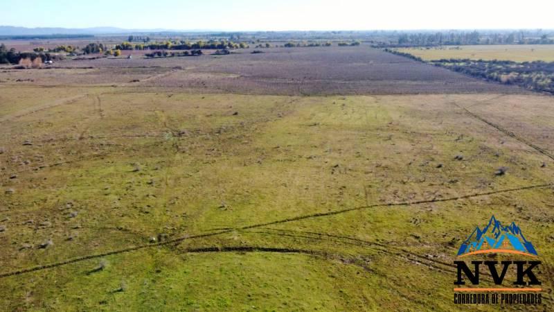 Terreno de 39 hectáreas en venta