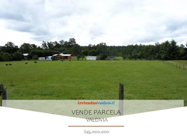 VENDO PARCELA 6000M2 SECTOR CAYUMAPU VALDIVIA