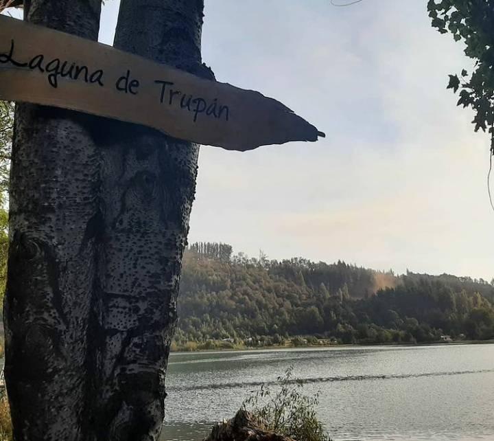 PARCELAS DE AGRADO EN LA LAGUNA TRUPAN