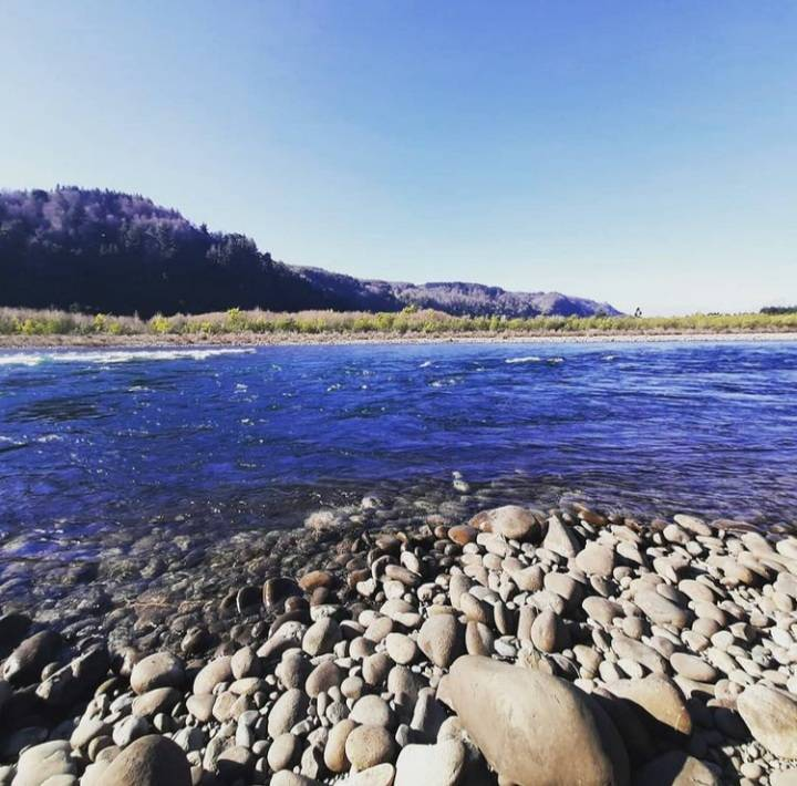 Vendemos terreno orilla de rio en Quilaco