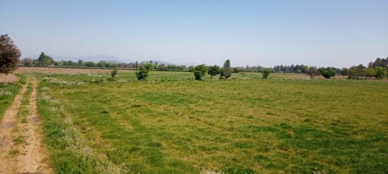 Hermosa parcela de 14 hectáreas