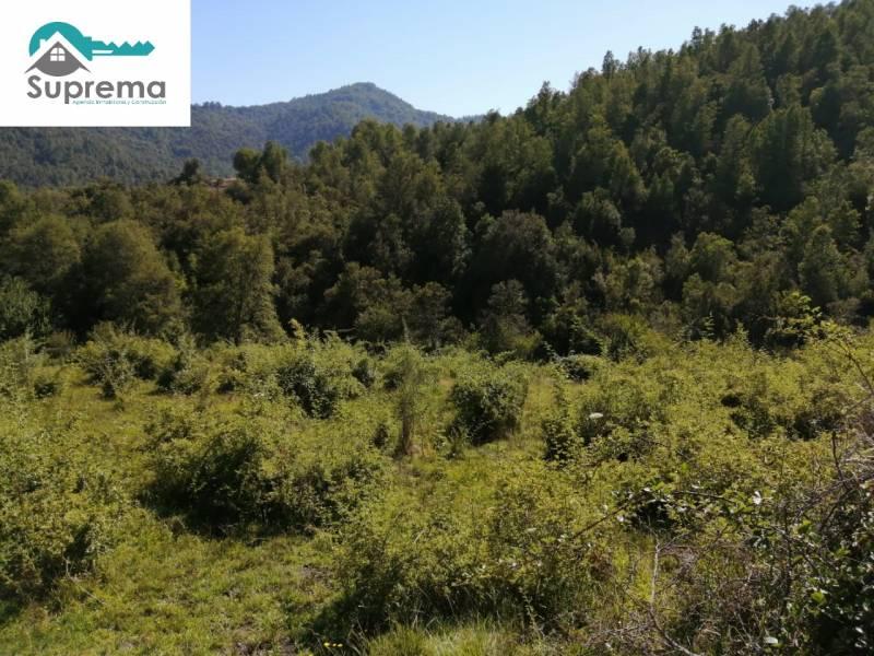 Hermoso Terreno de 64 hectáreas