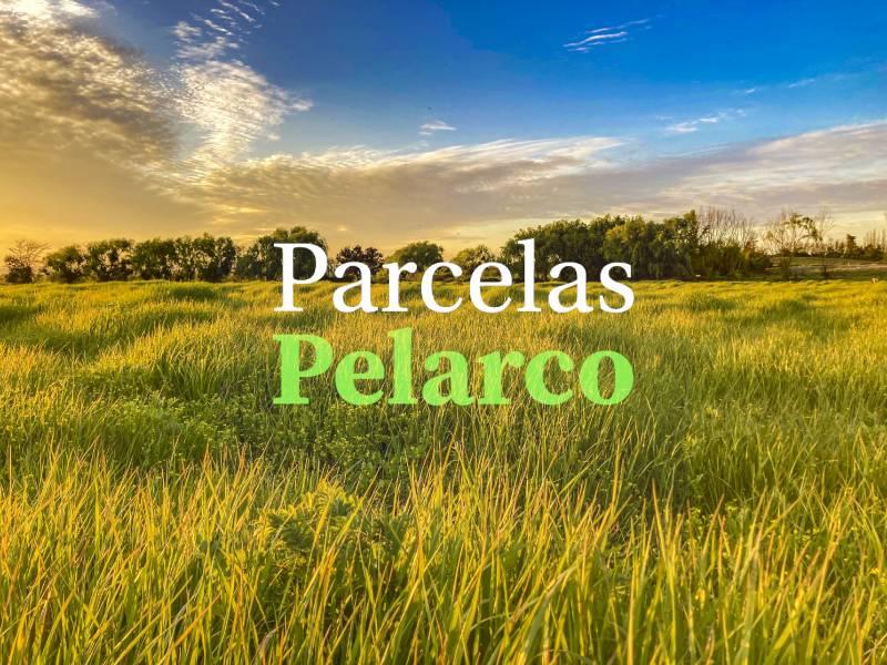 TALCA | VENTA DE PARCELAS CAMINO A PELARCO