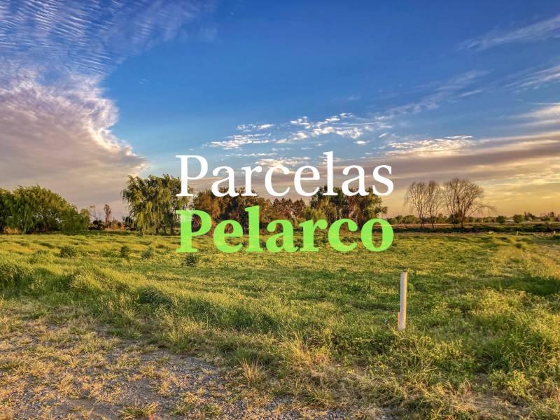 VENTA DE PARCELAS EN PROYECTO RESERVA PROVIDENCIA - TALCA