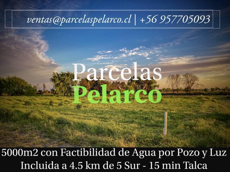 TALCA | VENTA DE PARCELAS CAMINO A PELARCO EN SANTA RITA VII