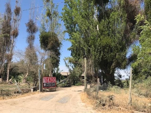 Terreno agrícola Santa Filomena, Melipilla