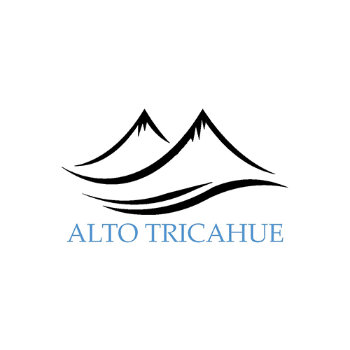 ALTO TRICAHUE PROPIEDADES LINARES