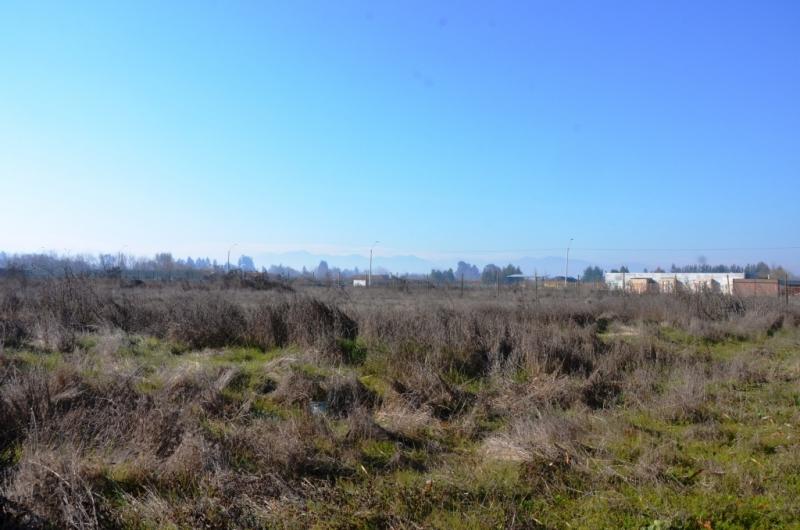 Excelente terreno industrial en Los Niches Curico