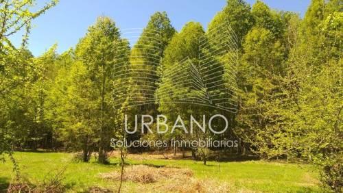 Parcelas Ubicadas a 9,5km de Panguipulli, Región de Los Ríos