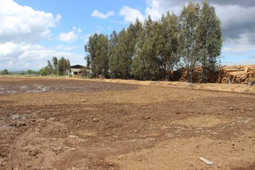 Se Vende Terreno Agrícola de 7,5 Hectáreas Astillero Talca