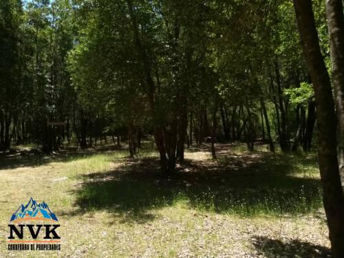Terreno de 11 hectáreas con excelente ubicación en venta