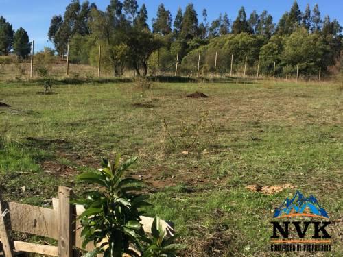 Terreno de 2.7 hectareas con 2 casas en venta.