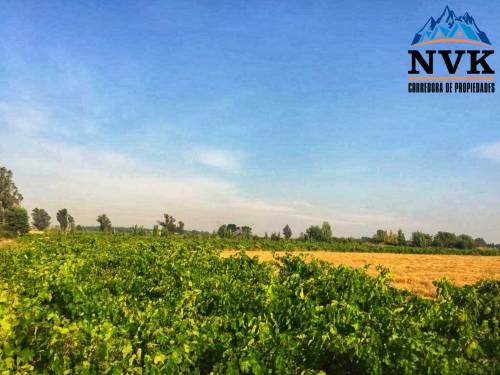 Hermoso terreno rural de 4.58 hectáreas en venta