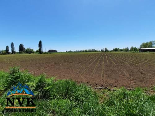 Terreno semiurbano de 3 hectáreas a orilla de camino