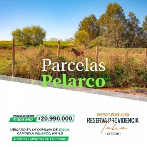 Talca | Venta de Parcelas de Terreno en VII Región