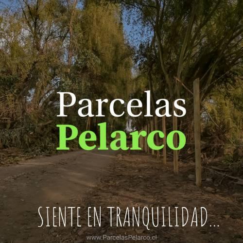 TALCA | Venta de Parcelas Camino a Santa Rita | Maule