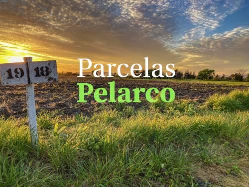 Vendo Parcelas en Talca | Camino a Pelarco Séptima Región